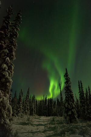 The aurora creeps up