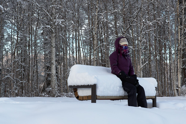 On a bench . . . it is winter