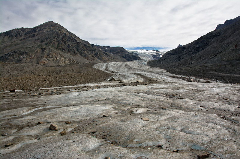 White Princess Branch of the Castner Glacier in the Alaska Range