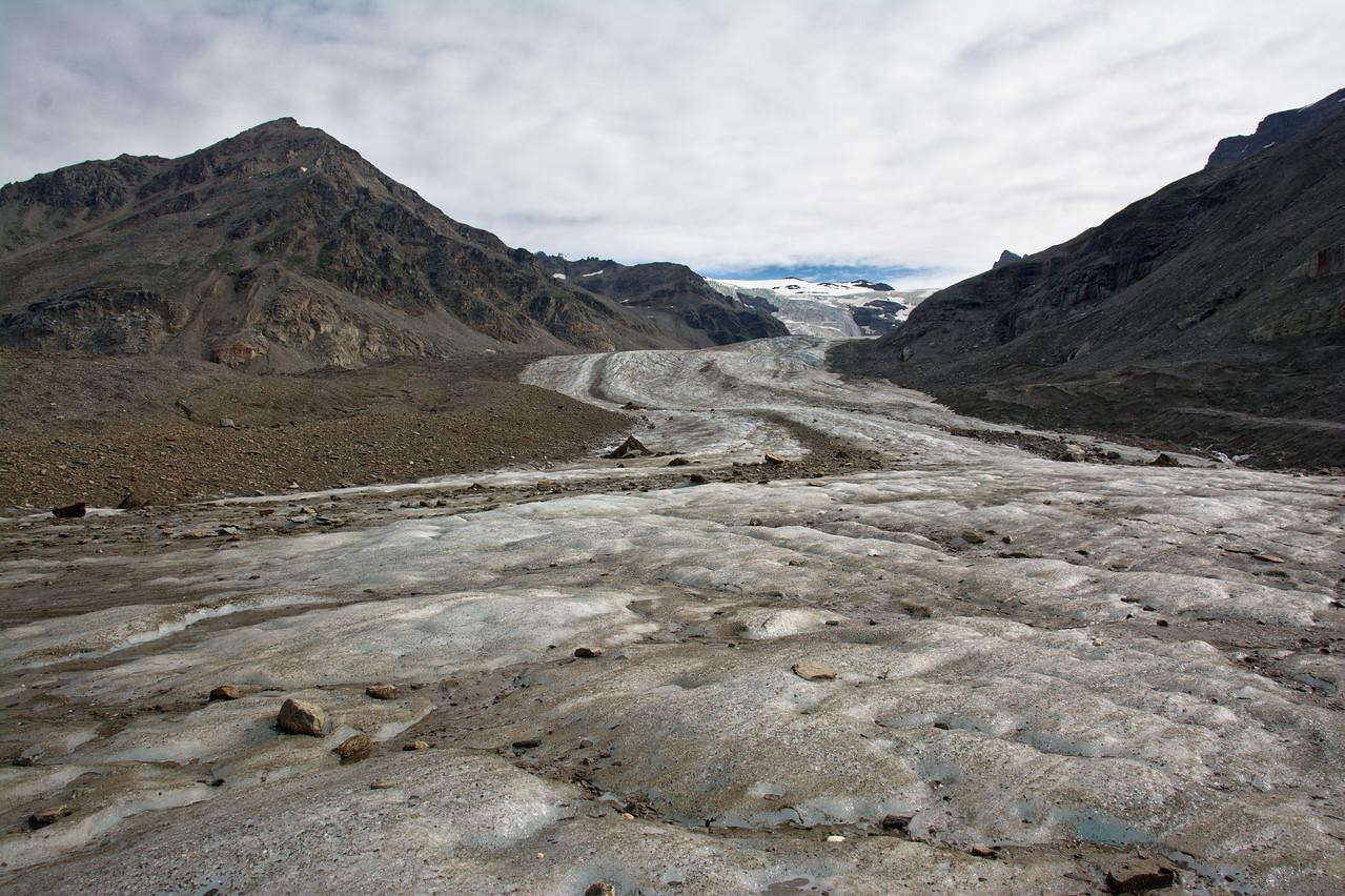 White Princess Branch of the Castner Glacier in the Alaska Range