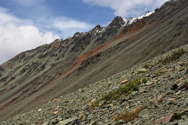 Talus on the steep slopes of Rainbow Ridge
