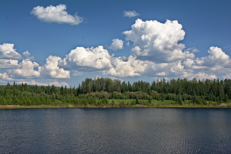 Wander lake at the Wedgewood Wildlife Sanctuary