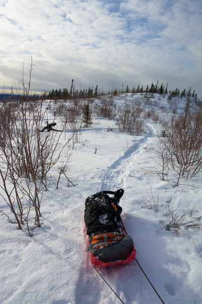 Pulling a sled up snow up the Granite Tors Trail in the Chena River State Recreation Area