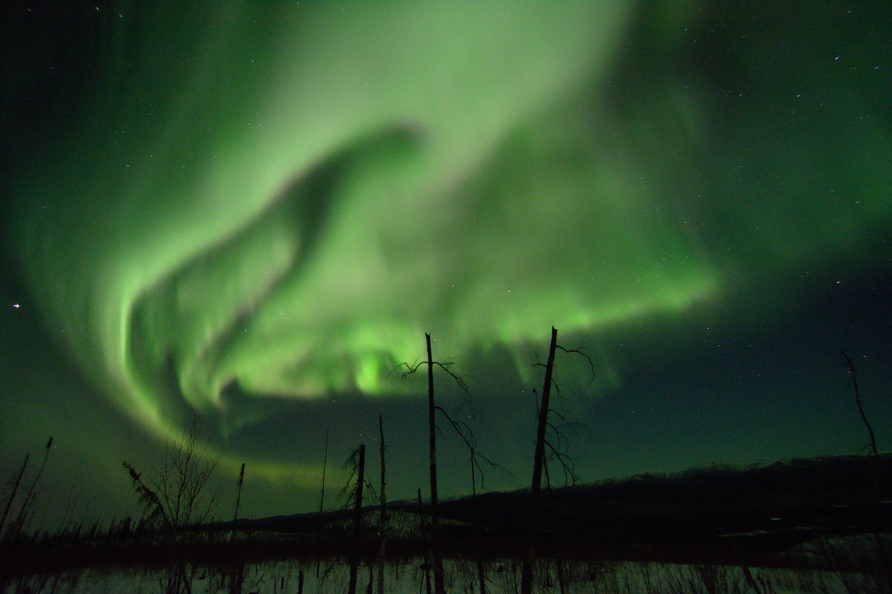 Northern lights over the Chena River State Recration Area