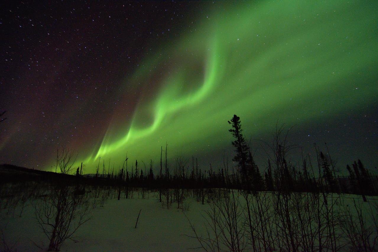 Aurora borealis, or northern lights over the Granite Tors trail