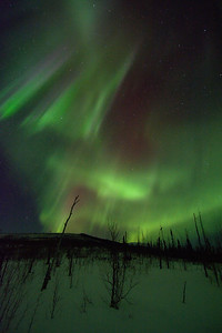Aurora on the Tors Trail