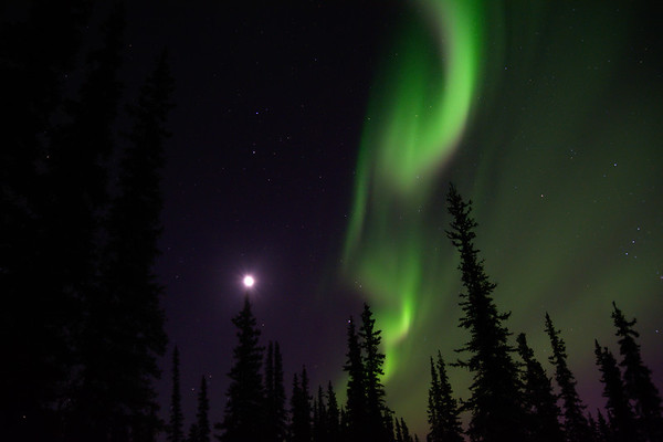 Aurora and Moon