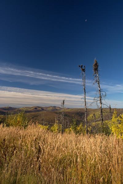 US Creek Road View