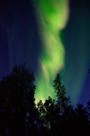 Large Aurora