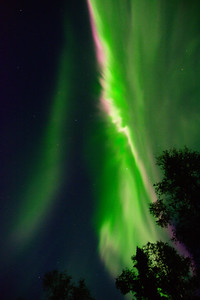 Fast Aurora
