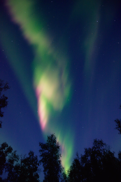 Green And Pink Aurora