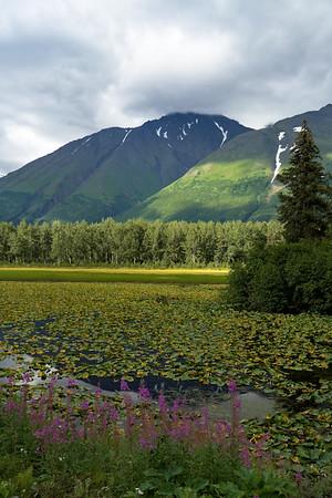 Seward and Kenai Fjords National Park