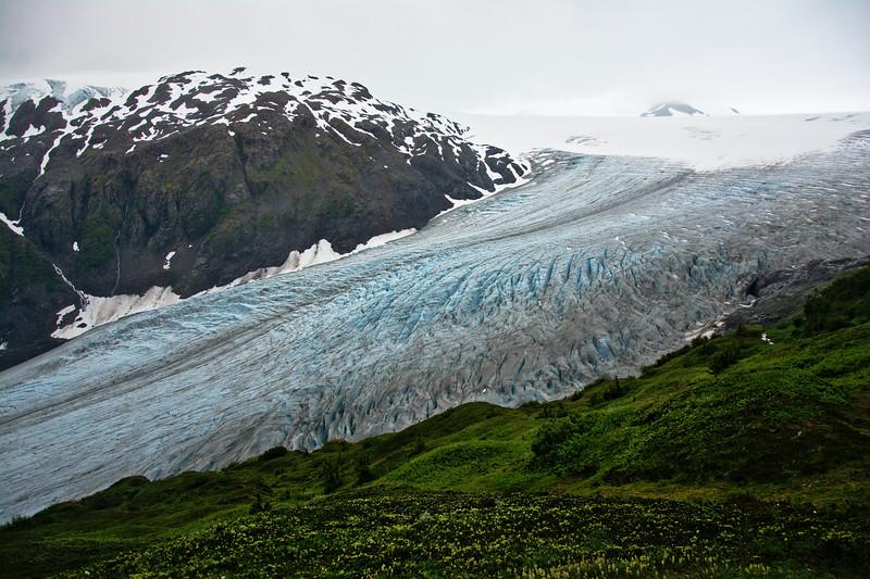 Exit Glacier Landscape