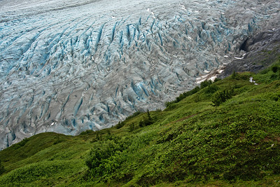 Exit Glacier and Harding Icefield Trail