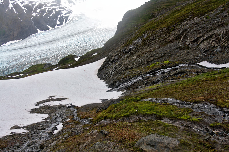 Streams over rocky slopes and snow lead down to the Exit Glacier