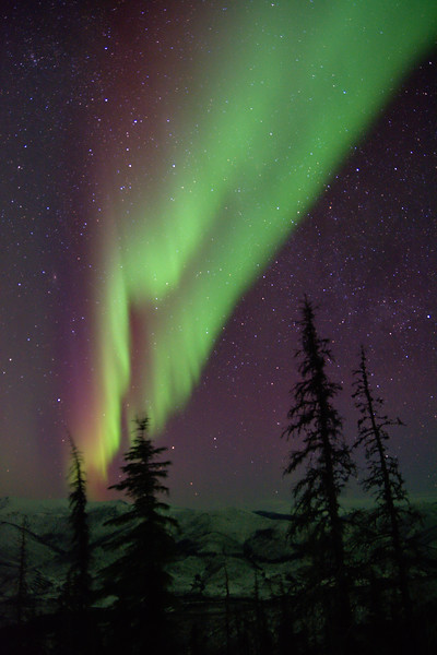 Northern lights from the Angel Rocks to Chena Hot Springs trail in the Chena River State Recreation Area