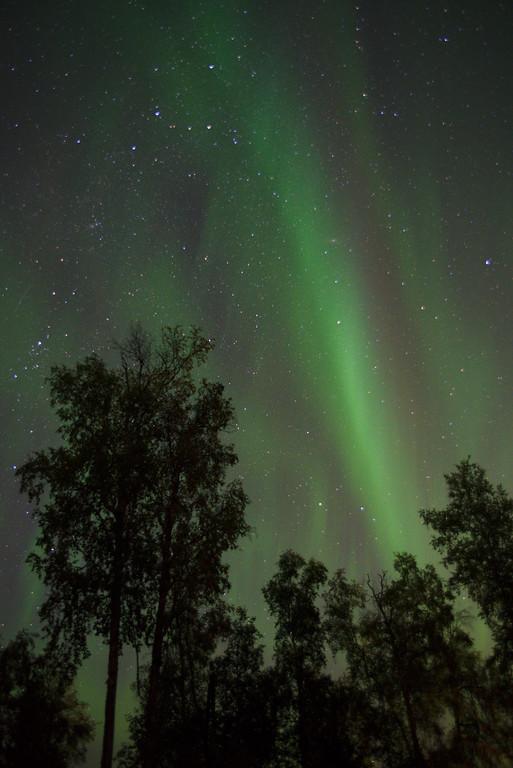 Aurora over Fairbanks. Camera Settings: Camera: Nikon D750 ISO: 2500 f/stop: 2.8 shutter speed: 10 seconds lens: Sigma 24-70mm f/2.8 IF EX DG HSM AF for Nikon Digital SLR Cameras