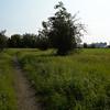 Seasonal Wetlands Trail