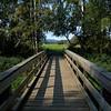 Bridge along the Seasonal Wetlands Trail