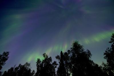 Flickering Aurora