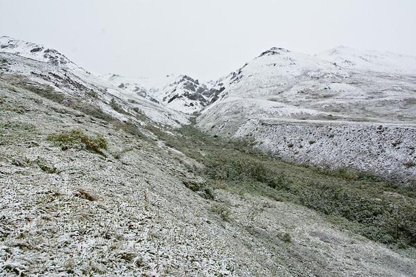 Summer Under That Snow