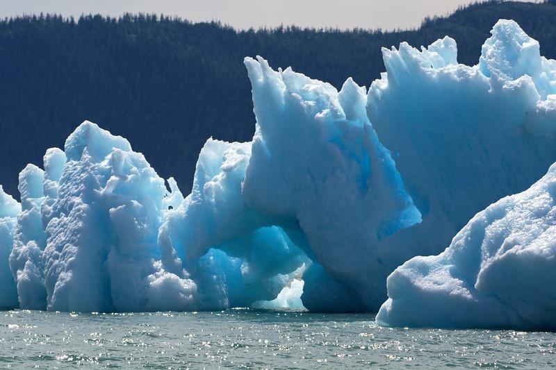 Iceberg in the Sound