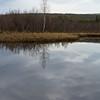 Pond on Ballaine