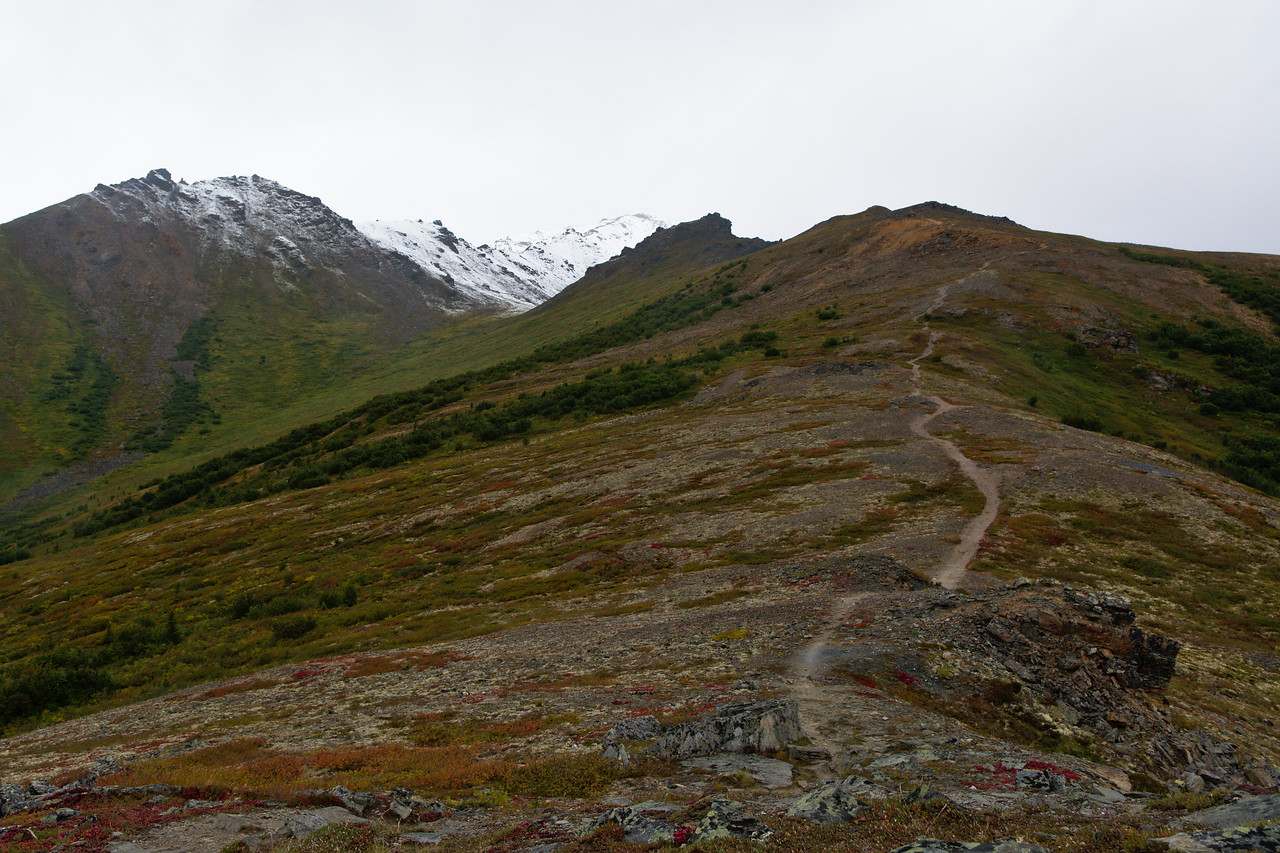 A trail through alpine tundra toward the snow-covered Mt. Healy in Denali National Park