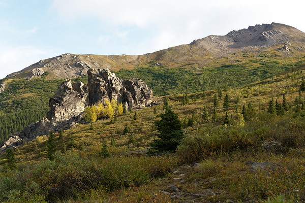 Schist Outcropping