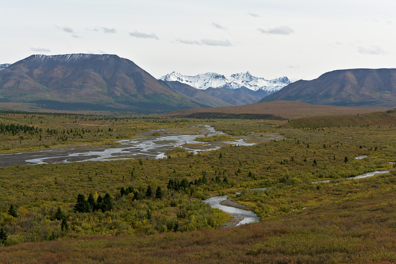 Fang Mountain over Savage River