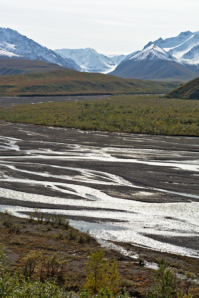East Fork and Polychrome Mountains