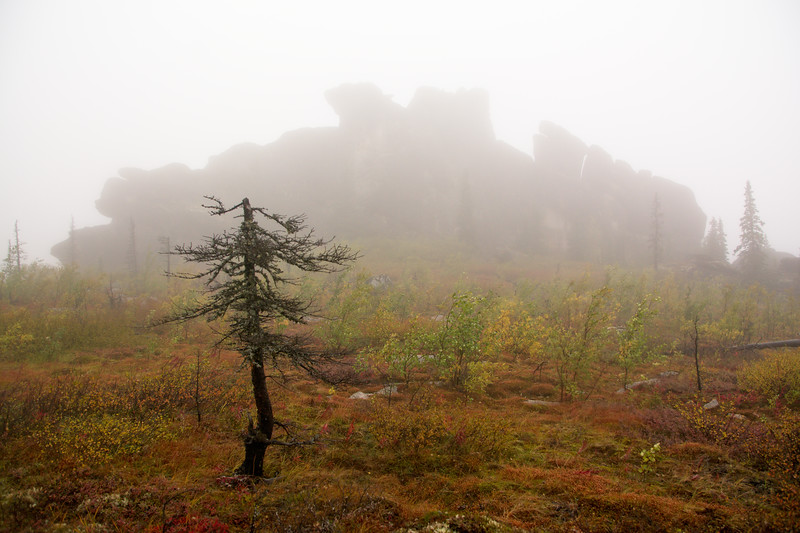 Granite in the Fog