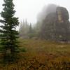 Spruce and Granite