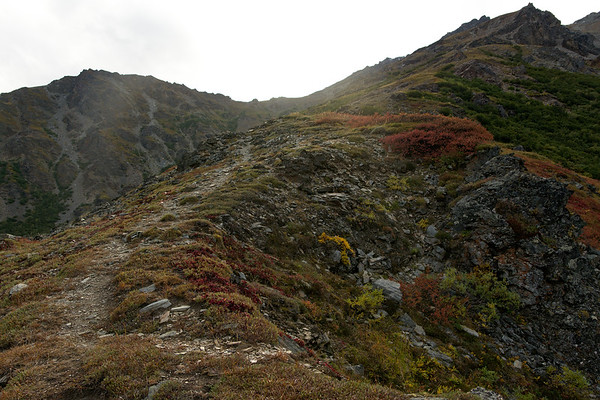 Another Alpine Trail