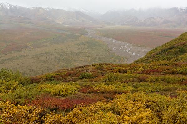 Tundra Changing