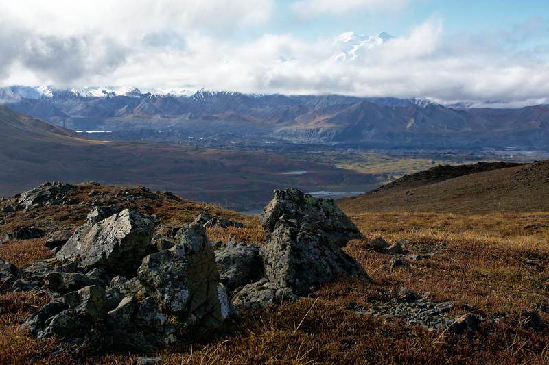 Thoro Landscape
