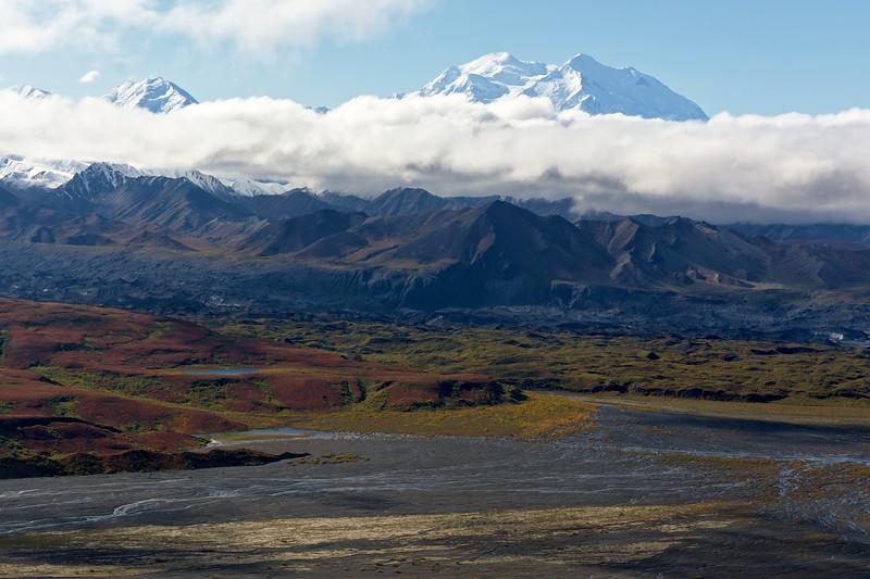 Denali rising above the clouds from the Thorofare Ridge near the Eielson Alpine Trail