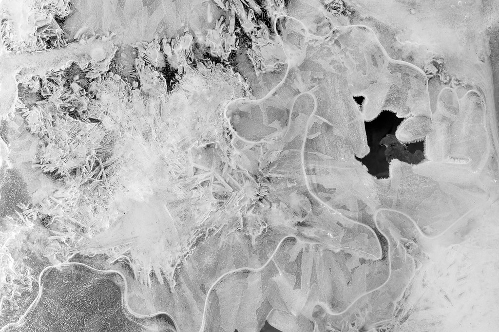 Black and white ice crystals in a small stream near the Sanctuary River in Denali National Park