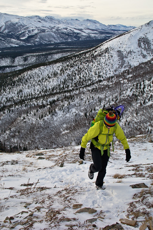 Hiker on a snowy trail in the mountains of the Alaska Range in Denali National Park