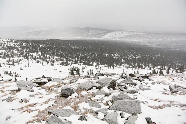 Snowless on the Summit