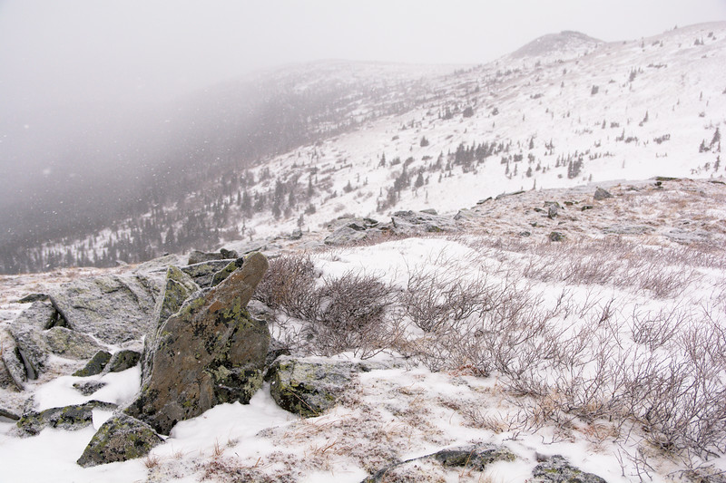 Wickersham Snow