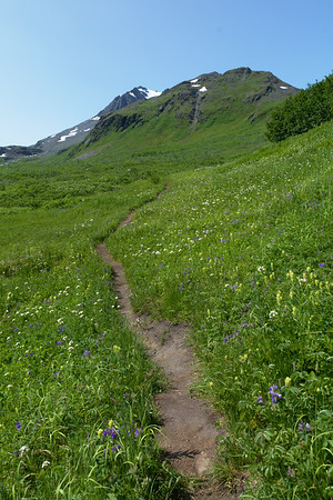 Worthington Glacier Ridge Trail