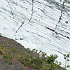 Worthington Glacier Ice