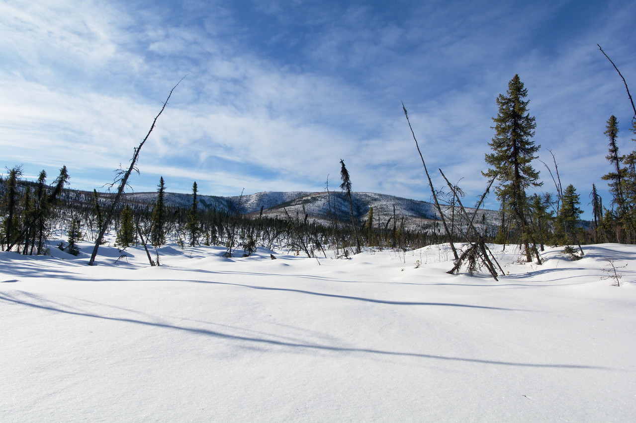 Snowy hillsides along the Granite Tors Trail in the Chena River State Recreation Area