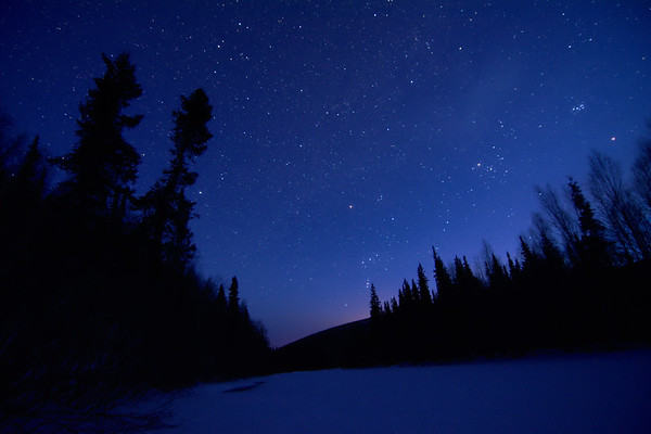 Orion over the Chena River