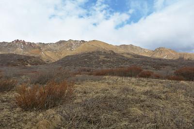 Polychrome Mountains
