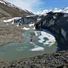 Canwell Glacier Terminus