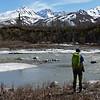 Looking over Miller Creek