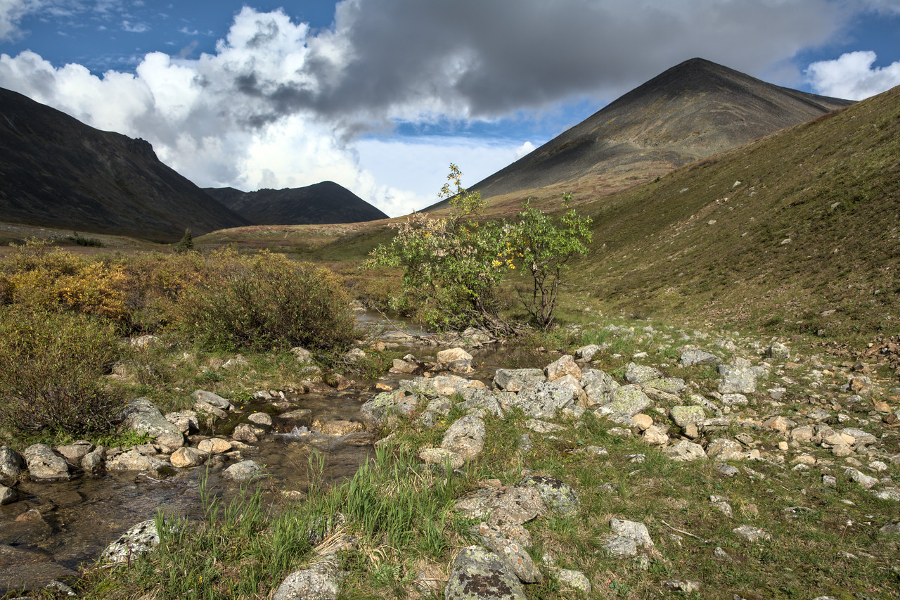 Nome Creek in the White Mountain National Recreation Area