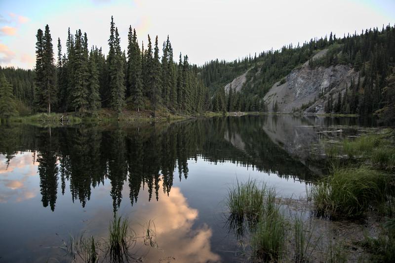 Reflections on Horseshoe Lake
